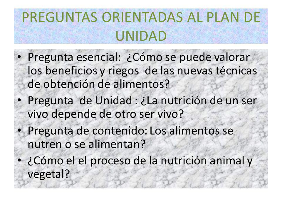 PREGUNTAS ORIENTADAS AL PLAN DE UNIDAD Pregunta esencial: ¿Cómo se puede valorar los beneficios y riegos de las nuevas técnicas de obtención de alimentos.