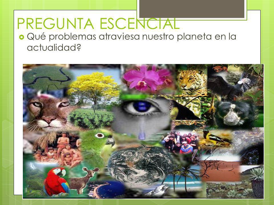 PREGUNTA ESCENCIAL Qué problemas atraviesa nuestro planeta en la actualidad?