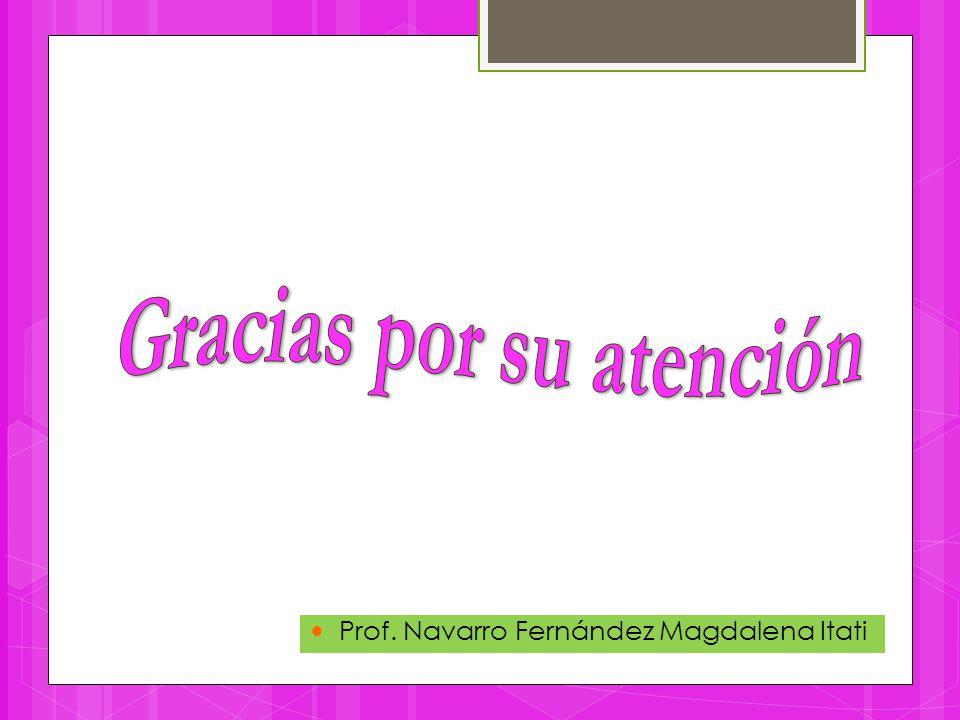 Prof. Navarro Fernández Magdalena Itati