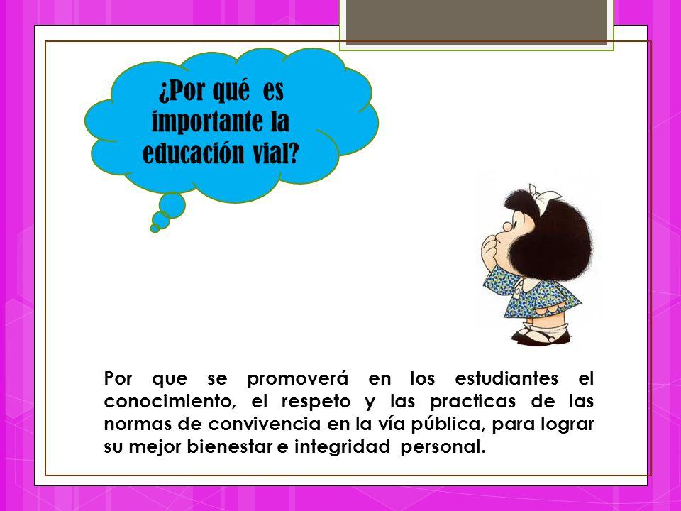 Por que se promoverá en los estudiantes el conocimiento, el respeto y las practicas de las normas de convivencia en la vía pública, para lograr su mej