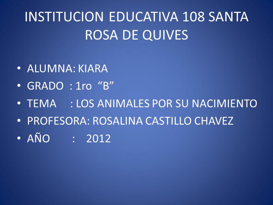 INSTITUCION EDUCATIVA 108 SANTA ROSA DE QUIVES ALUMNA: KIARA GRADO : 1ro B TEMA : LOS ANIMALES POR SU NACIMIENTO PROFESORA: ROSALINA CASTILLO CHAVEZ A