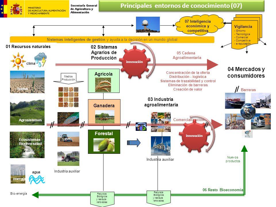 06 Resto Bioeconomía Recursos Biológicos y residuos renovables Bio-energía Nuevos productos Recursos Biológicos y residuos renovables Sistemas intelig