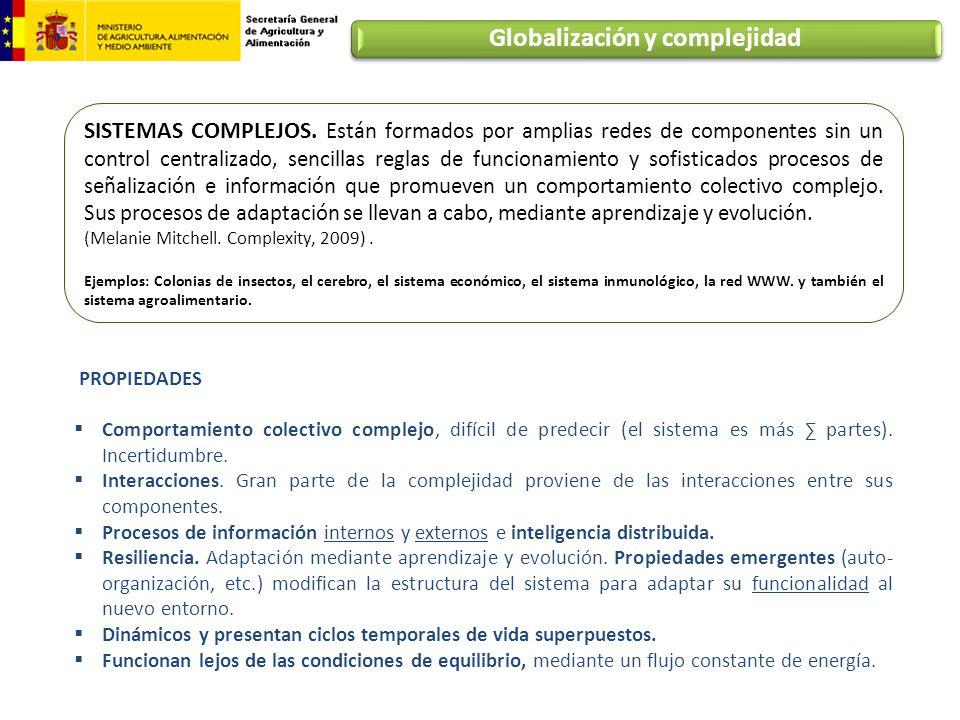 Tipos de trabajos Bases Teóricas y metodologías del análisis de cadenas Año de inicio Agribusiness y complejo agroindustrial.