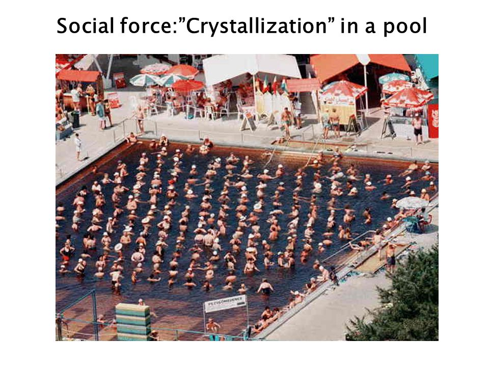 Social force:Crystallization in a pool