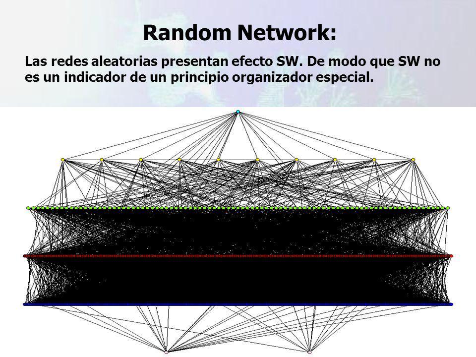 Random Network: Las redes aleatorias presentan efecto SW.