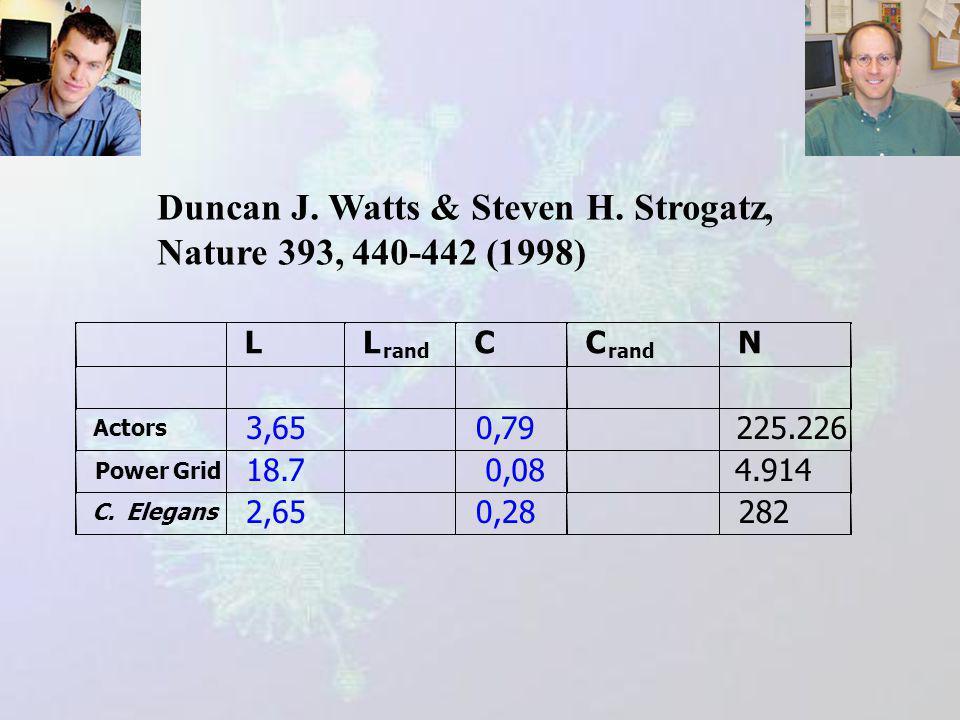 Duncan J.Watts & Steven H.