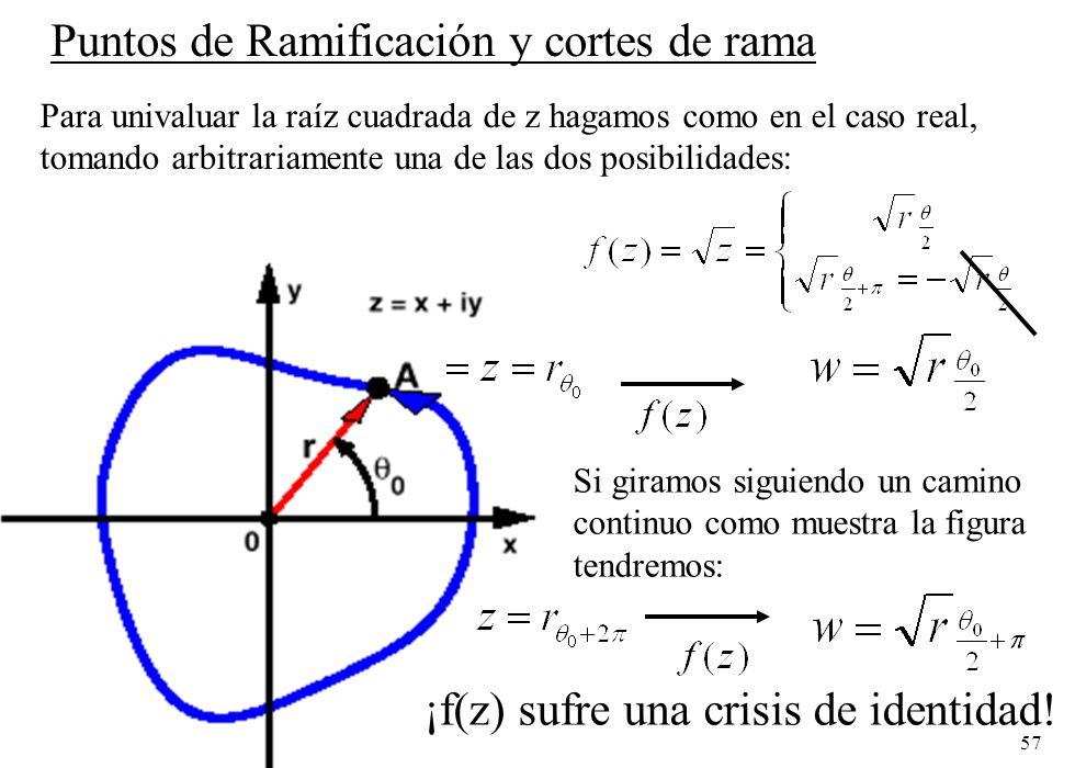 57 Puntos de Ramificación y cortes de rama Para univaluar la raíz cuadrada de z hagamos como en el caso real, tomando arbitrariamente una de las dos p