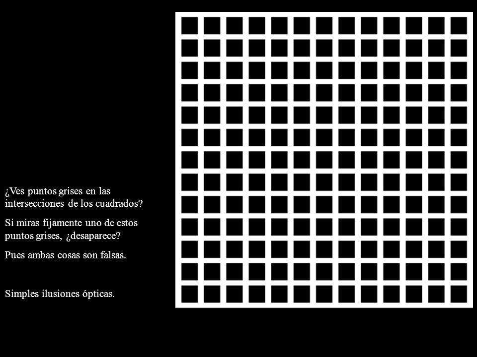 ¿Ves puntos grises en las intersecciones de los cuadrados? Si miras fijamente uno de estos puntos grises, ¿desaparece? Pues ambas cosas son falsas. Si