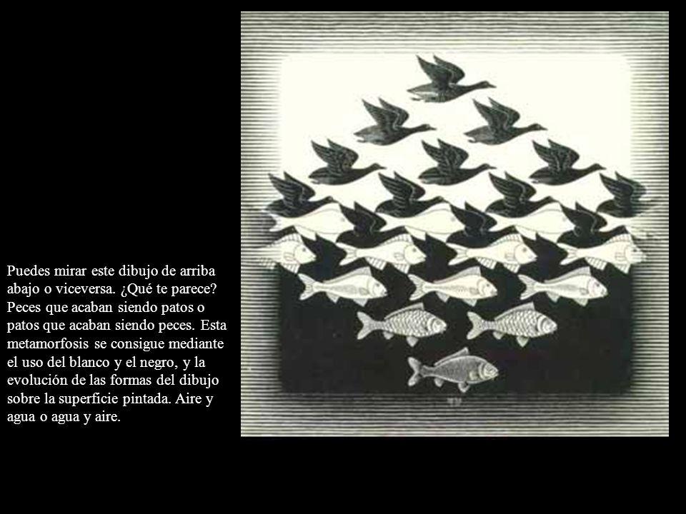 Puedes mirar este dibujo de arriba abajo o viceversa. ¿Qué te parece? Peces que acaban siendo patos o patos que acaban siendo peces. Esta metamorfosis