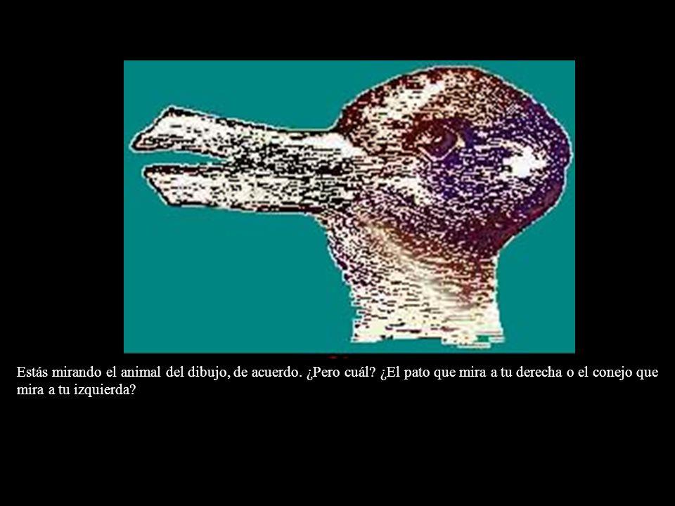 Estás mirando el animal del dibujo, de acuerdo. ¿Pero cuál? ¿El pato que mira a tu derecha o el conejo que mira a tu izquierda?