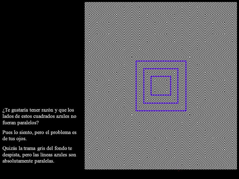 ¿Te gustaría tener razón y que los lados de estos cuadrados azules no fueran paralelos? Pues lo siento, pero el problema es de tus ojos. Quizás la tra