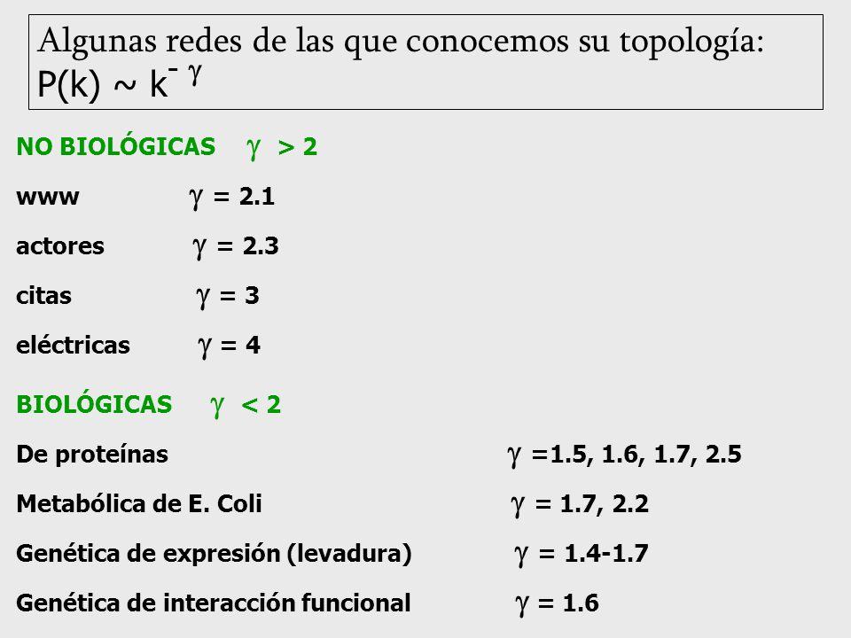 NO BIOLÓGICAS > 2 www = 2.1 actores = 2.3 citas = 3 eléctricas = 4 BIOLÓGICAS < 2 De proteínas =1.5, 1.6, 1.7, 2.5 Metabólica de E. Coli = 1.7, 2.2 Ge