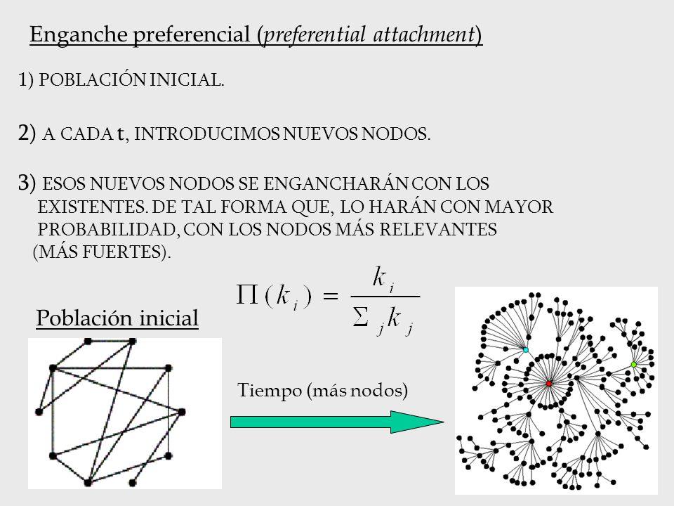 Enganche preferencial ( preferential attachment ) 1) POBLACIÓN INICIAL. 2) A CADA t, INTRODUCIMOS NUEVOS NODOS. 3) ESOS NUEVOS NODOS SE ENGANCHARÁN CO