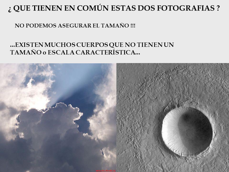 ¿ QUE TIENEN EN COMÚN ESTAS DOS FOTOGRAFIAS ? NO PODEMOS ASEGURAR EL TAMAÑO !!!...EXISTEN MUCHOS CUERPOS QUE NO TIENEN UN TAMAÑO o ESCALA CARACTERÍSTI