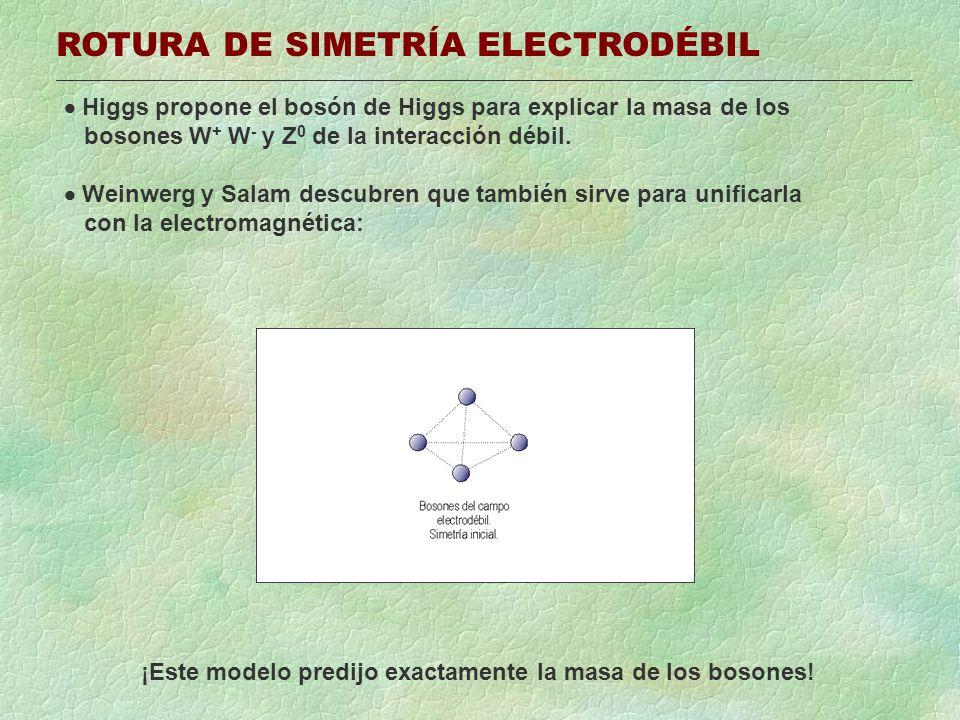 ROTURA DE SIMETRÍA ELECTRODÉBIL Higgs propone el bosón de Higgs para explicar la masa de los bosones W + W - y Z 0 de la interacción débil. Weinwerg y