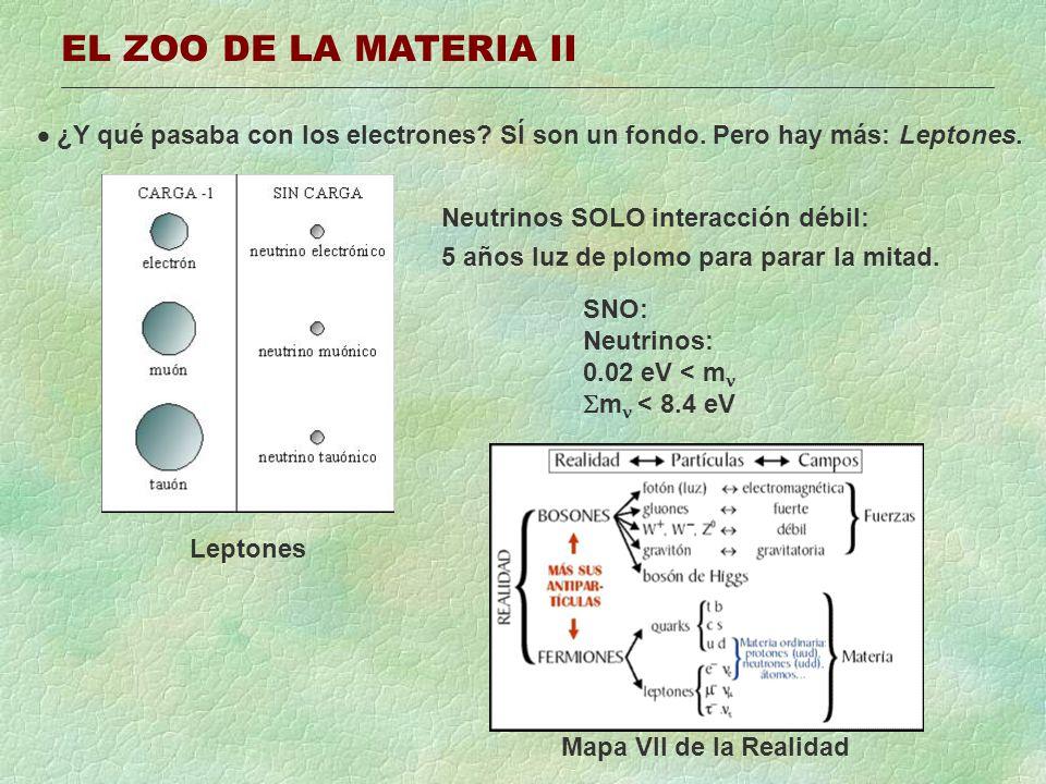EL ZOO DE LA MATERIA II ¿Y qué pasaba con los electrones? SÍ son un fondo. Pero hay más: Leptones. Leptones SNO: Neutrinos: 0.02 eV < m m < 8.4 eV Neu