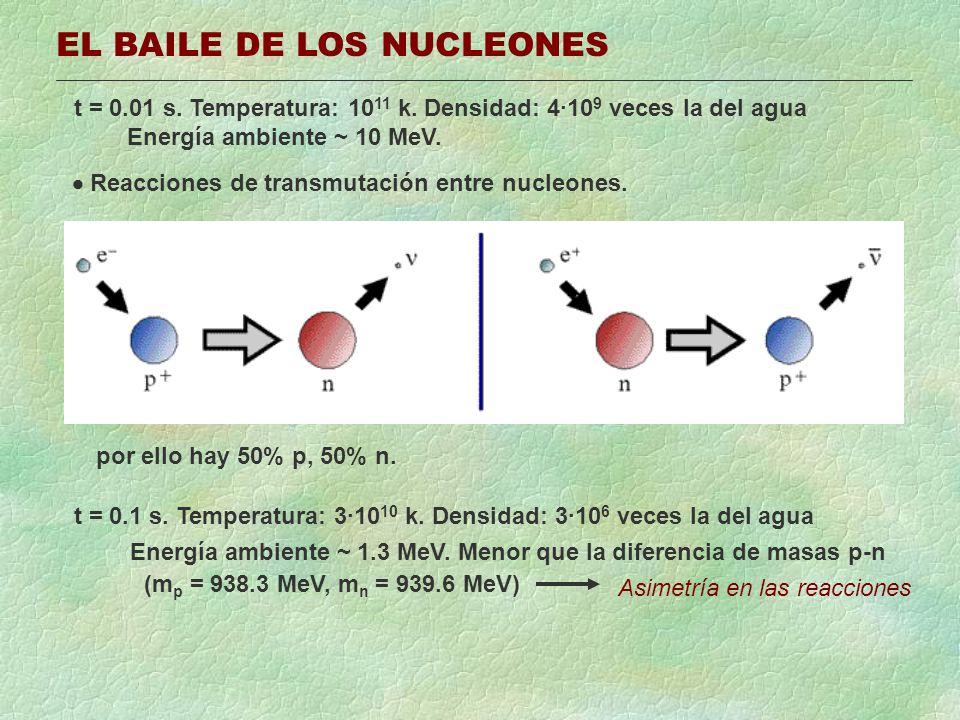 EL BAILE DE LOS NUCLEONES t = 0.01 s. Temperatura: 10 11 k. Densidad: 4·10 9 veces la del agua Energía ambiente ~ 10 MeV. Reacciones de transmutación