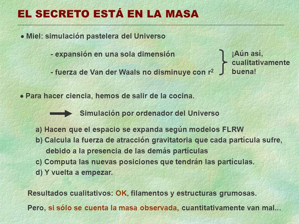 EL SECRETO ESTÁ EN LA MASA Miel: simulación pastelera del Universo - expansión en una sola dimensión - fuerza de Van der Waals no disminuye con r 2 ¡A