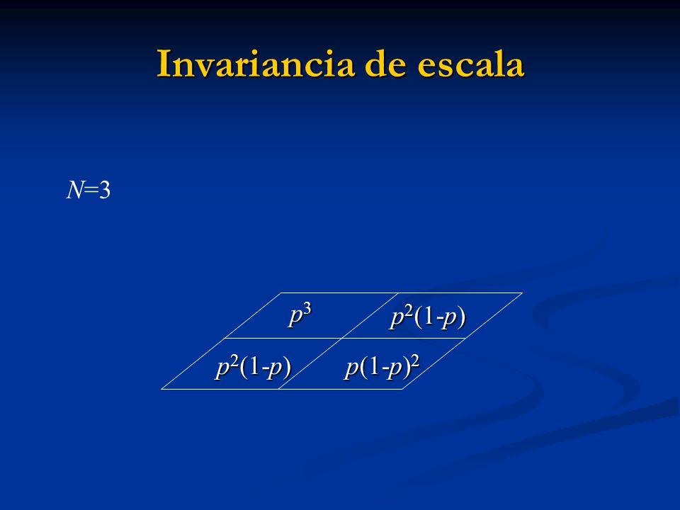 p3p3p3p3 p 2 (1-p) p 2 (1-p) p 2 (1-p) p(1-p) 2 p(1-p) 2 N=3 Invariancia de escala