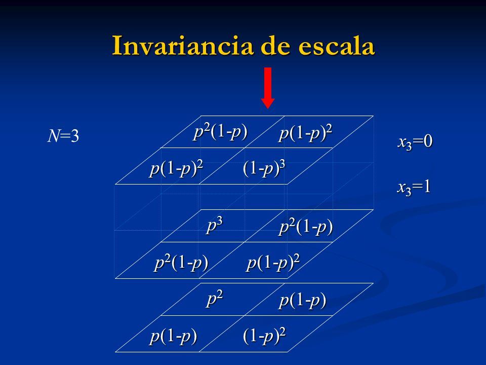 p3p3p3p3 p 2 (1-p) p 2 (1-p) p 2 (1-p) p(1-p) 2 p(1-p) 2 N=3 Invariancia de escala p2p2p2p2 p(1-p) (1-p) 2 p 2 (1-p) p(1-p) 2 (1-p) 3 x 3 =1 x 3 =0