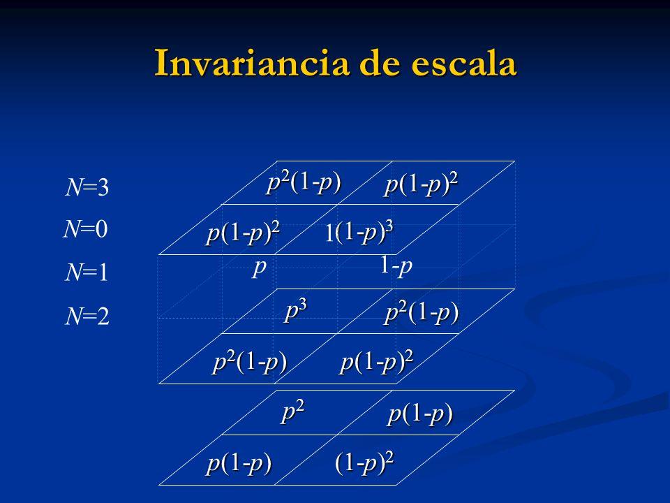 p3p3p3p3 p 2 (1-p) p 2 (1-p) p(1-p) 2 p(1-p) 2 p 2 (1-p) N=3 Invariancia de escala p2p2p2p2 p(1-p) p(1-p) (1-p) 2 p(1-p) (1-p) 3 p 2 (1-p) p(1-p) 2 1