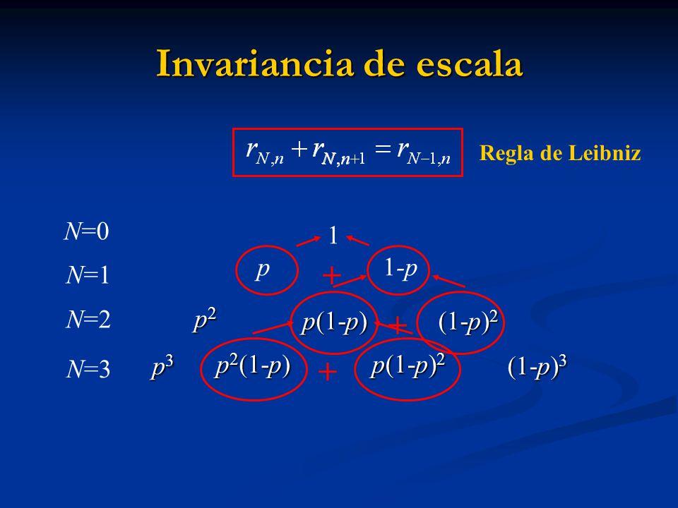 p3p3p3p3 p 2 (1-p) p 2 (1-p) p(1-p) 2 p(1-p) 2 N=3 Invariancia de escala p2 p2 p2 p2 p(1-p) p(1-p) (1-p) 2 (1-p) 2 (1-p) 3 (1-p) 3 1 p 1-p N=0 N=1 N=2