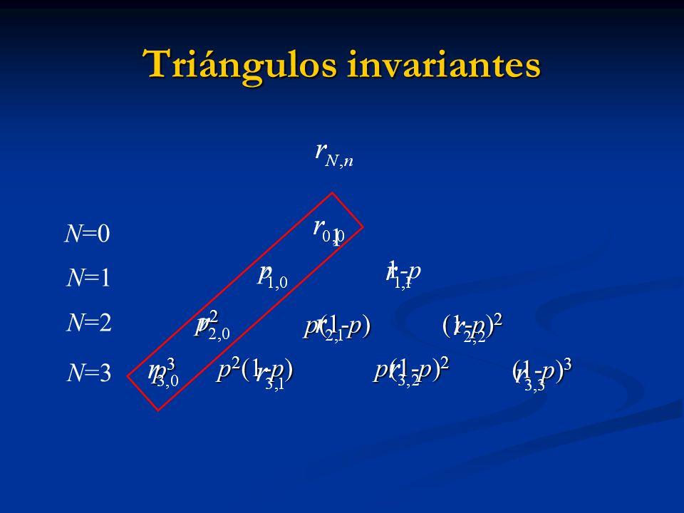 p3p3p3p3 p 2 (1-p) p 2 (1-p) p(1-p) 2 p(1-p) 2 N=3 Triángulos invariantes p2 p2 p2 p2 p(1-p) p(1-p) (1-p) 2 (1-p) 2 (1-p) 3 (1-p) 3 1 p 1-p N=0 N=1 N=