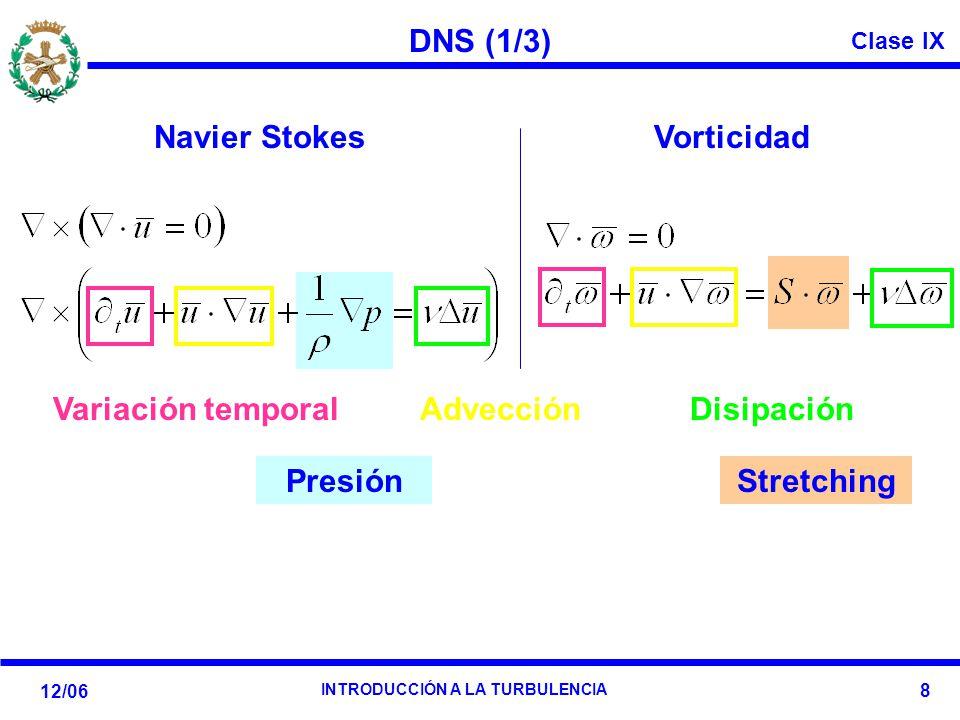 Clase IX 12/06 INTRODUCCIÓN A LA TURBULENCIA 8 DNS (1/3) Stretching Presión Navier StokesVorticidad Variación temporal Advección Disipación