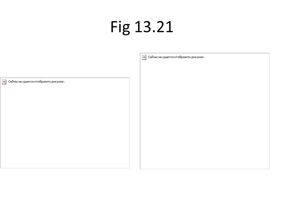 Fig 13.21