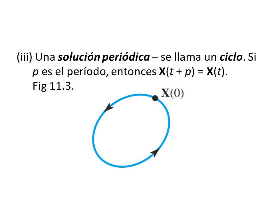 (iii) Una solución periódica – se llama un ciclo. Si p es el período, entonces X(t + p) = X(t). Fig 11.3.