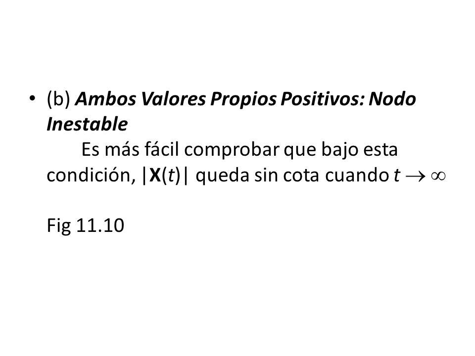 (b) Ambos Valores Propios Positivos: Nodo Inestable Es más fácil comprobar que bajo esta condición, |X(t)| queda sin cota cuando t Fig 11.10