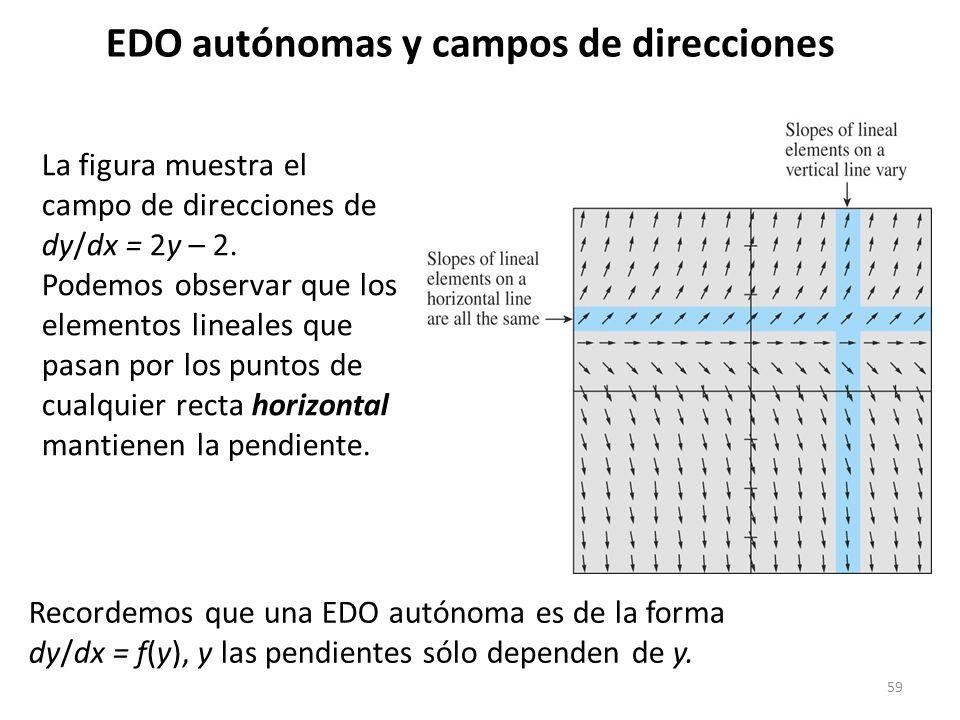 59 EDO autónomas y campos de direcciones La figura muestra el campo de direcciones de dy/dx = 2y – 2. Podemos observar que los elementos lineales que