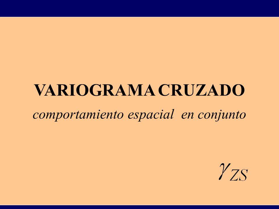 Si Z y S son funciones aleatorias estacionarias o intrínsecas, el variograma cruzado de ellas se define como : Para su estimación se utiliza el variograma cruzado experimental