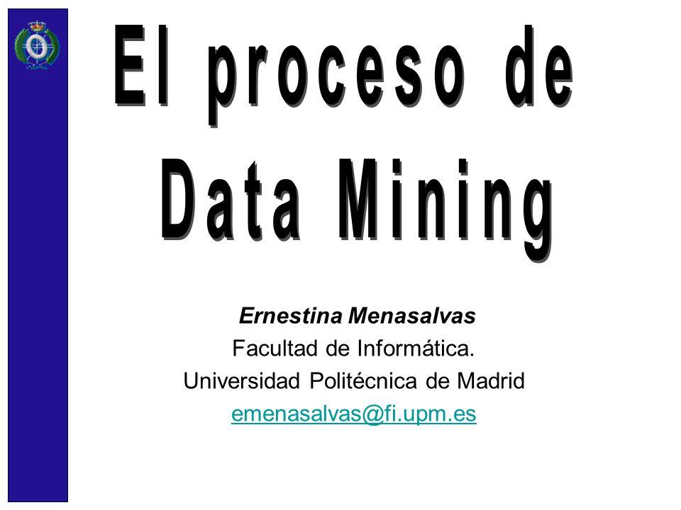 Ernestina Menasalvas Facultad de Informática. Universidad Politécnica de Madrid emenasalvas@fi.upm.es
