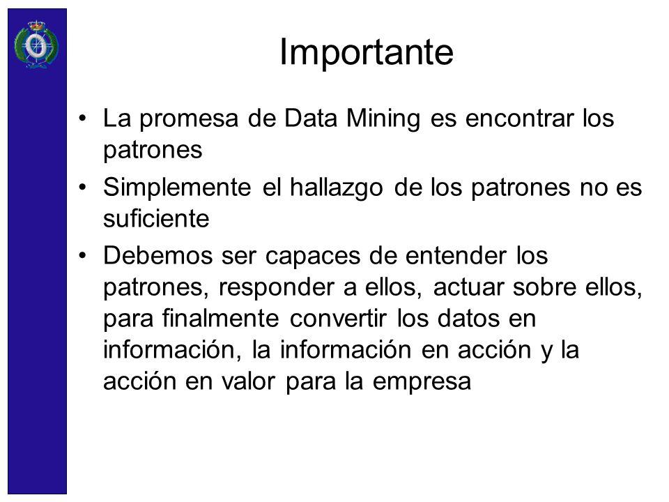 Importante La promesa de Data Mining es encontrar los patrones Simplemente el hallazgo de los patrones no es suficiente Debemos ser capaces de entende