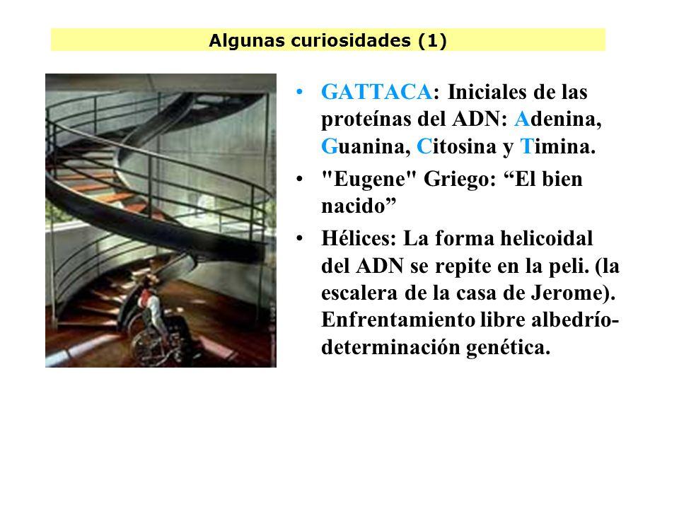 Algunos datos (4) Andrew Nicoll Debutó como director con Gattaca. El show de Truman, Simone Michael Nyman Minimalismo. Premio en Sitges por Gattaca, E