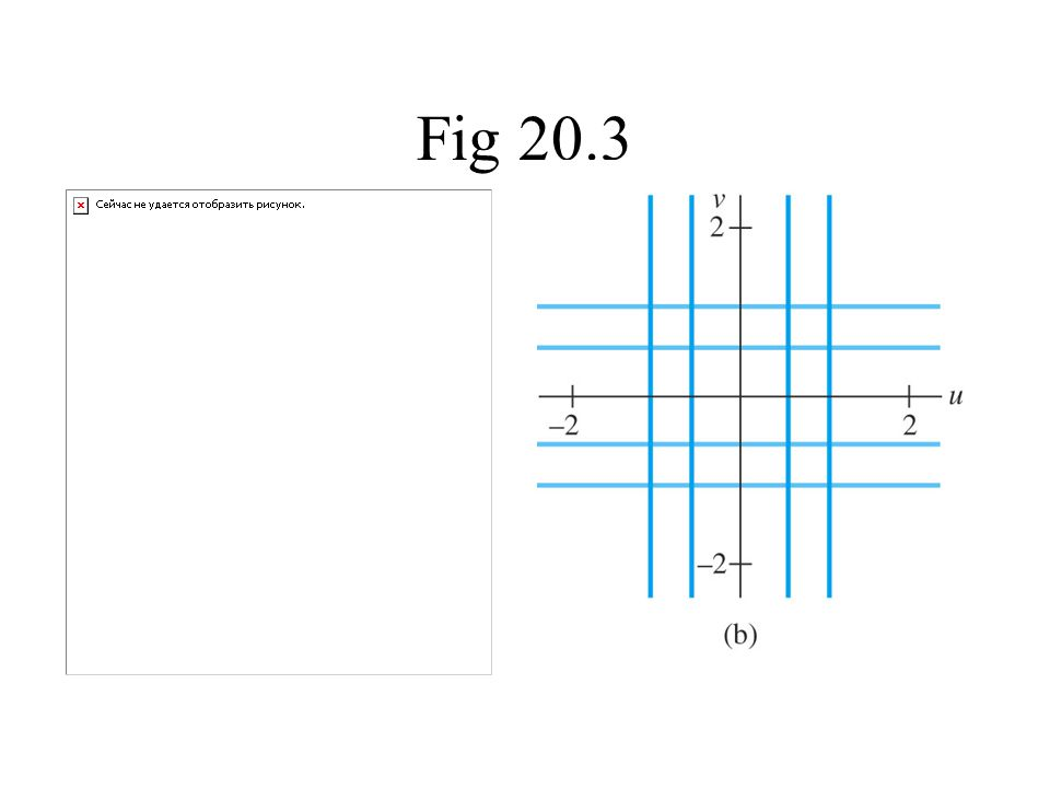 Fig 20.3