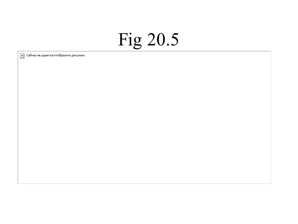 Fig 20.5