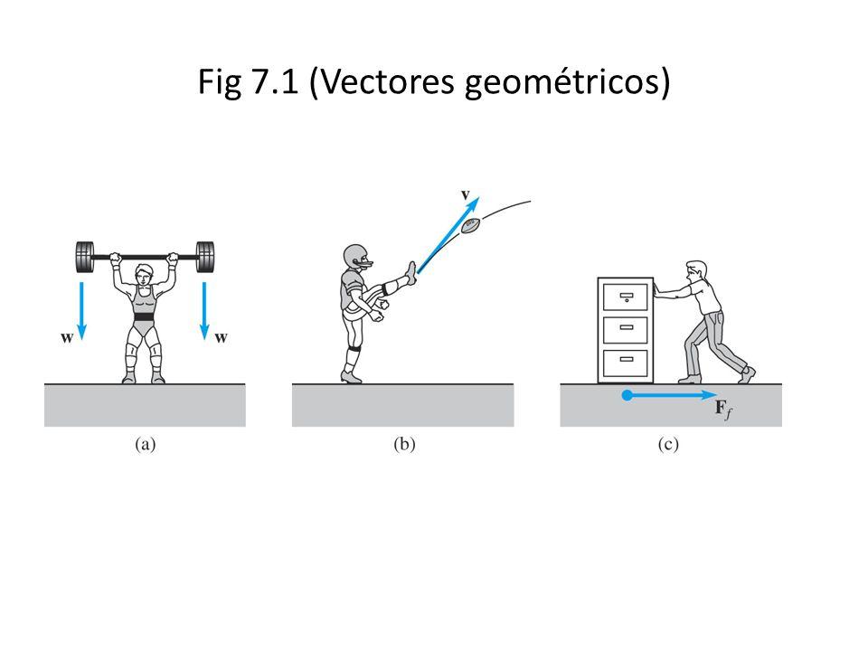 Fig 7.1 (Vectores geométricos)