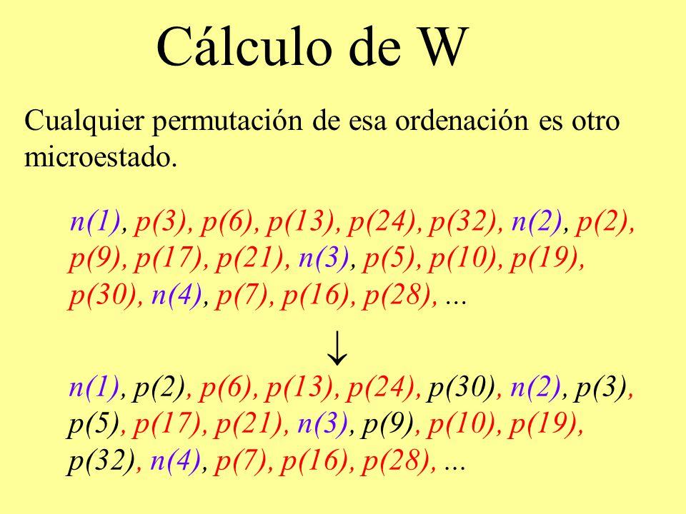 Cálculo de W Cualquier permutación de esa ordenación es otro microestado. n(1), p(3), p(6), p(13), p(24), p(32), n(2), p(2), p(9), p(17), p(21), n(3),