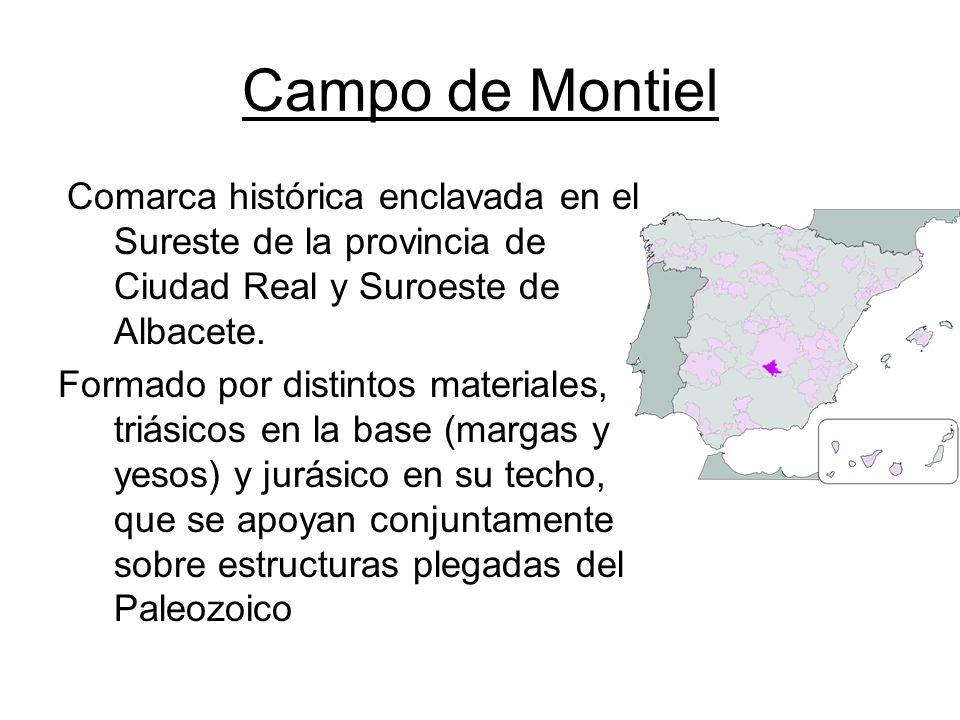 Campo de Montiel Comarca histórica enclavada en el Sureste de la provincia de Ciudad Real y Suroeste de Albacete. Formado por distintos materiales, tr