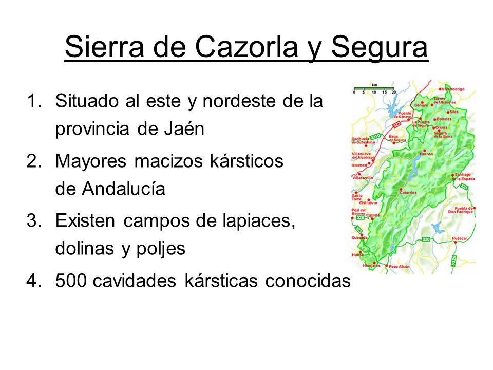 Sierra de Cazorla y Segura 1.Situado al este y nordeste de la provincia de Jaén 2.Mayores macizos kársticos de Andalucía 3.Existen campos de lapiaces, dolinas y poljes 4.500 cavidades kársticas conocidas