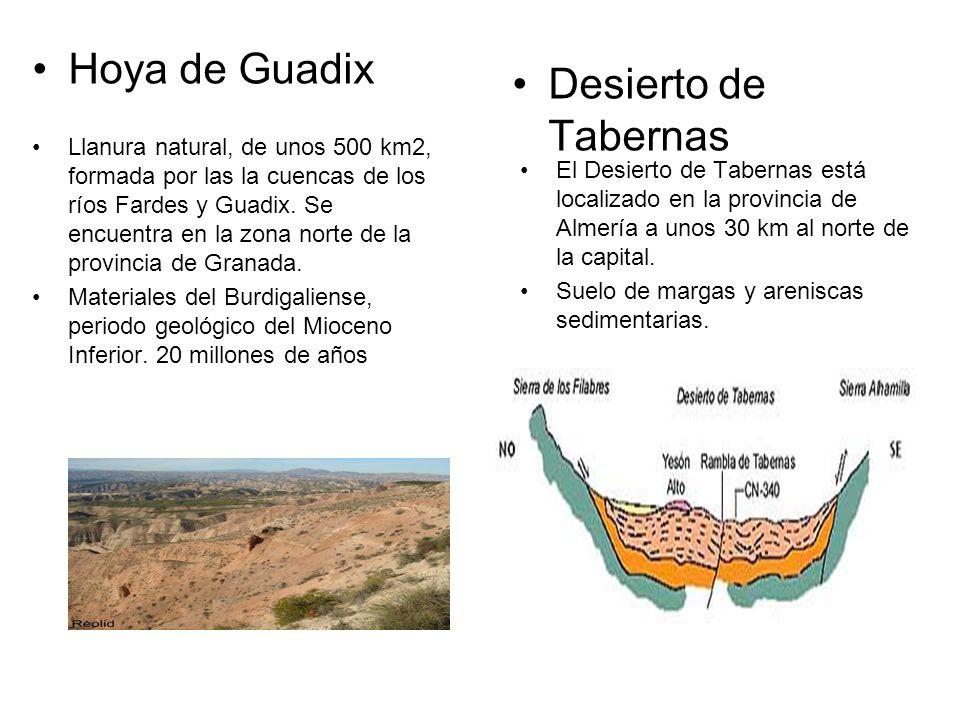 Hoya de Guadix Llanura natural, de unos 500 km2, formada por las la cuencas de los ríos Fardes y Guadix.