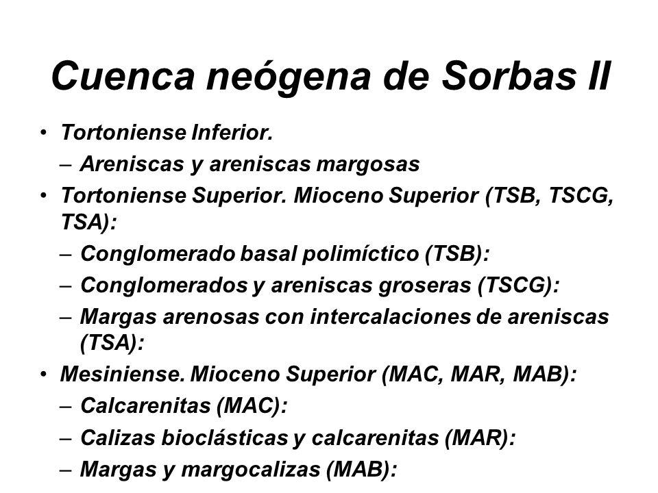 Cuenca neógena de Sorbas II Tortoniense Inferior. –Areniscas y areniscas margosas Tortoniense Superior. Mioceno Superior (TSB, TSCG, TSA): –Conglomera