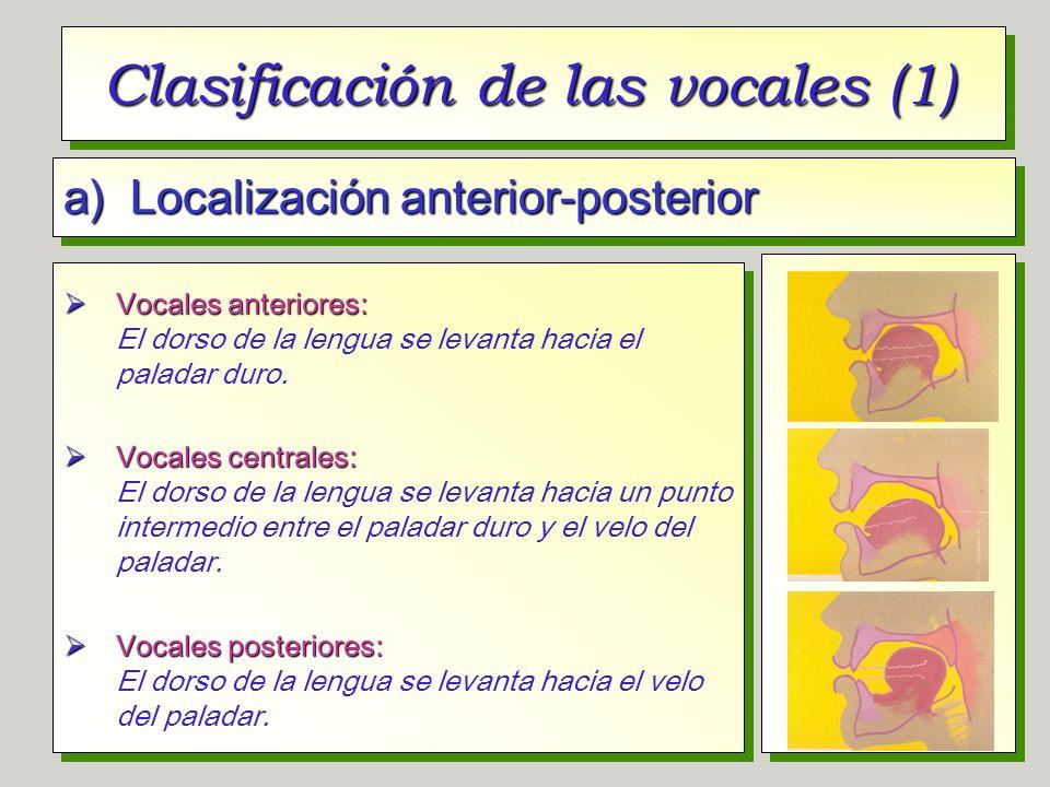 Clasificación de las vocales (1) a) Localización anterior-posterior Vocales anteriores: Vocales anteriores: El dorso de la lengua se levanta hacia el