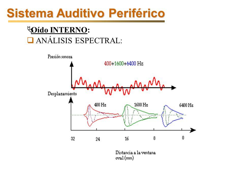 Sistema Auditivo Periférico Oído INTERNO: ANÁLISIS ESPECTRAL: