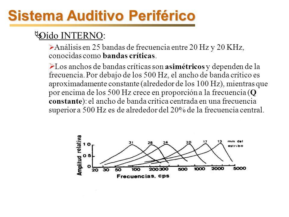 Sistema Auditivo Periférico Oído INTERNO: Análisis en 25 bandas de frecuencia entre 20 Hz y 20 KHz, conocidas como bandas críticas.