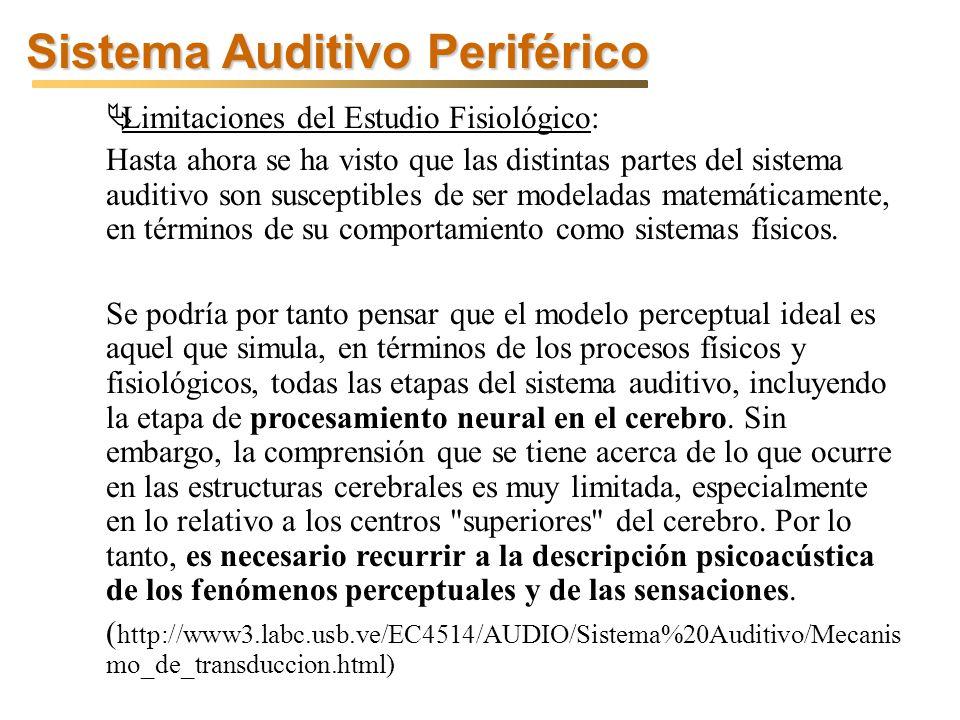 Sistema Auditivo Periférico Limitaciones del Estudio Fisiológico: Hasta ahora se ha visto que las distintas partes del sistema auditivo son susceptibles de ser modeladas matemáticamente, en términos de su comportamiento como sistemas físicos.