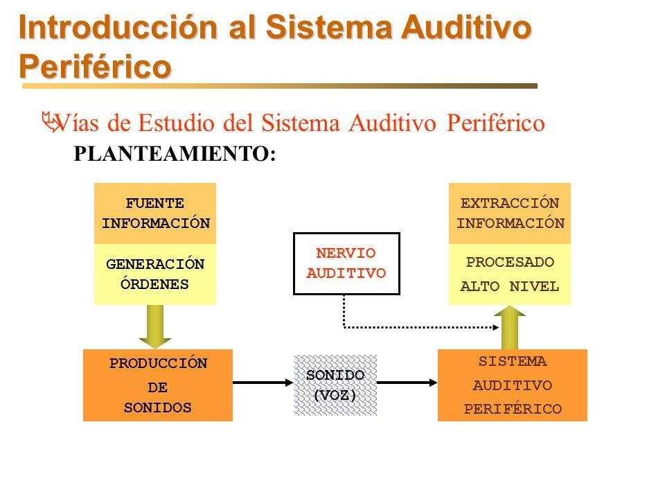 Introducción al Sistema Auditivo Periférico Vías de Estudio del Sistema Auditivo Periférico PLANTEAMIENTO: FUENTE INFORMACIÓN GENERACIÓN ÓRDENES PRODUCCIÓN DE SONIDOS SONIDO (VOZ) SISTEMA AUDITIVO PERIFÉRICO EXTRACCIÓN INFORMACIÓN PROCESADO ALTO NIVEL NERVIO AUDITIVO