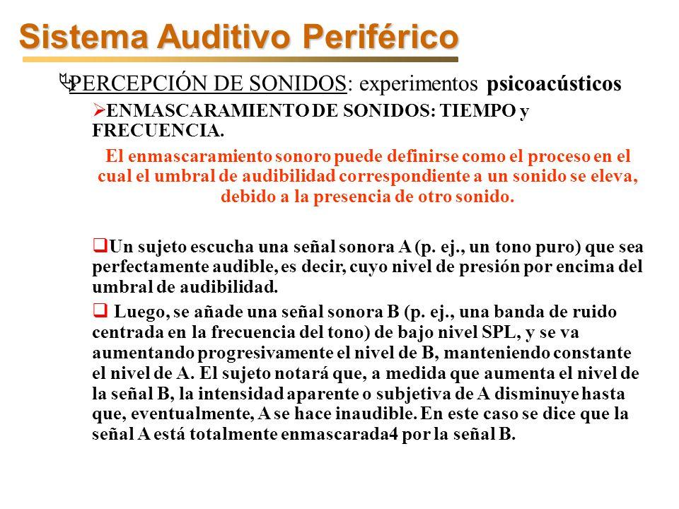 Sistema Auditivo Periférico PERCEPCIÓN DE SONIDOS: experimentos psicoacústicos ENMASCARAMIENTO DE SONIDOS: TIEMPO y FRECUENCIA.
